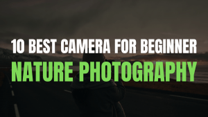 10 best Camera for beginner nature photography