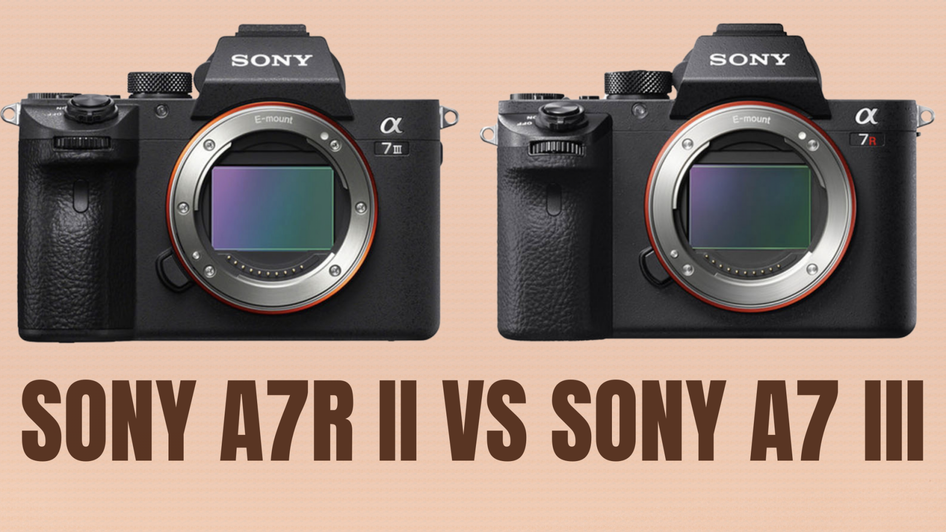 Sony A7R II VS Sony A7 III (Which one to choose)