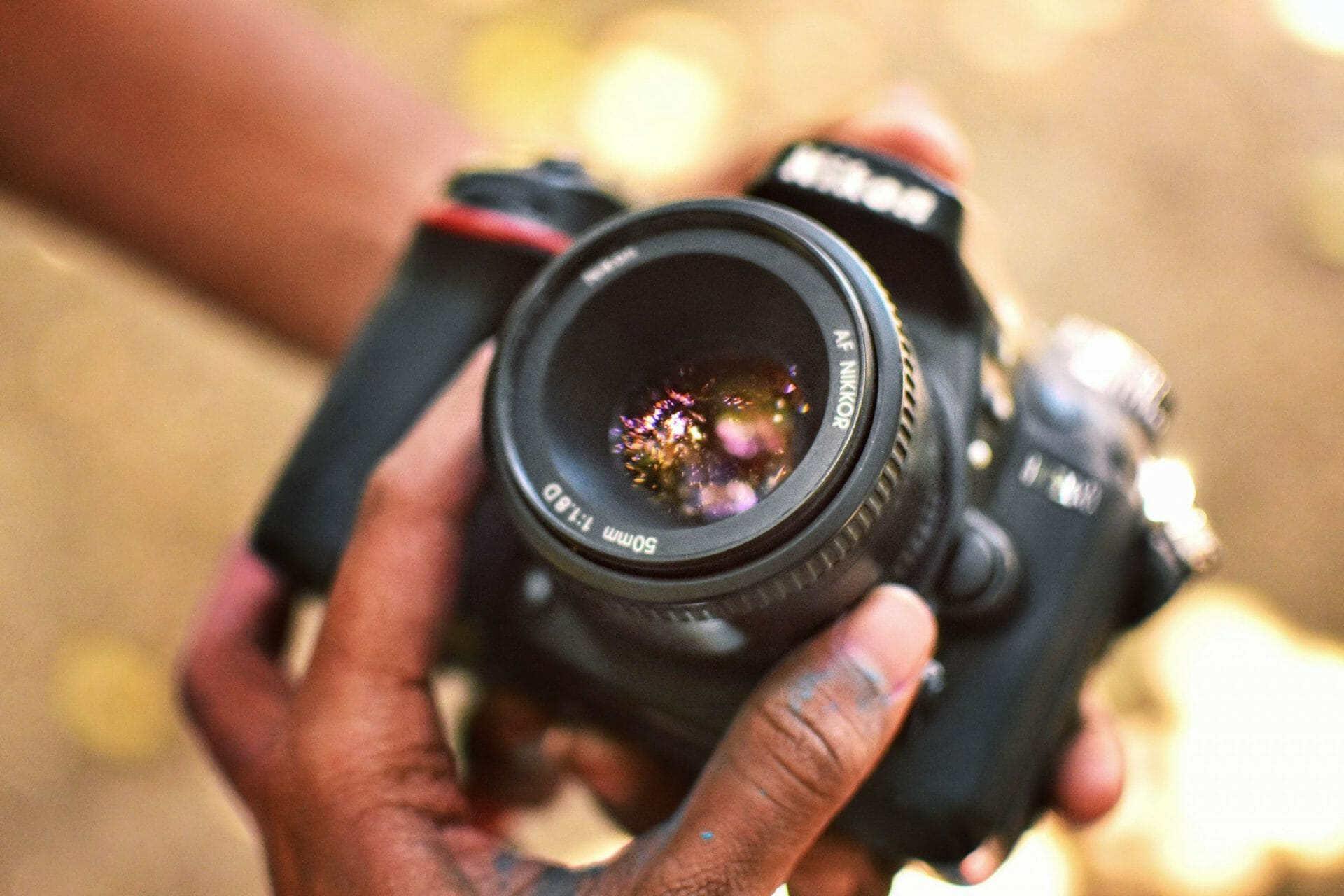 5 Best Cameras for High-Resolution Macro Photography