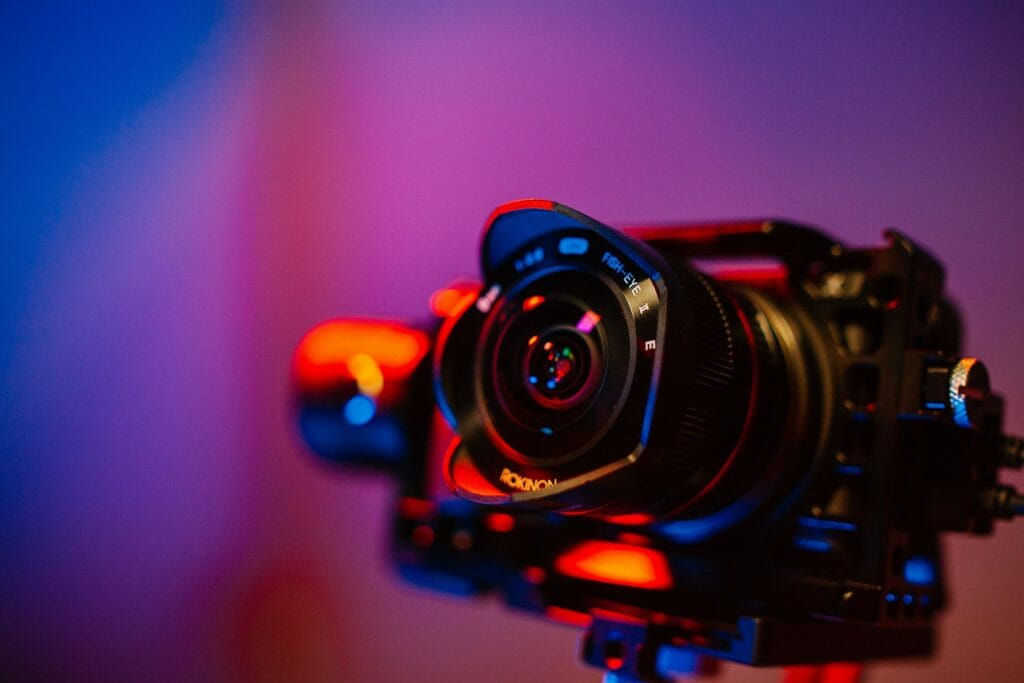 Best Cameras for Macro Photography.
