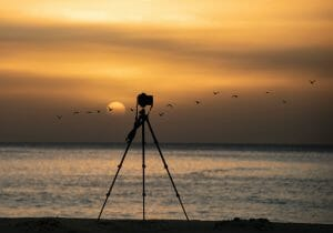 10 best budget camera tripod for Photographers