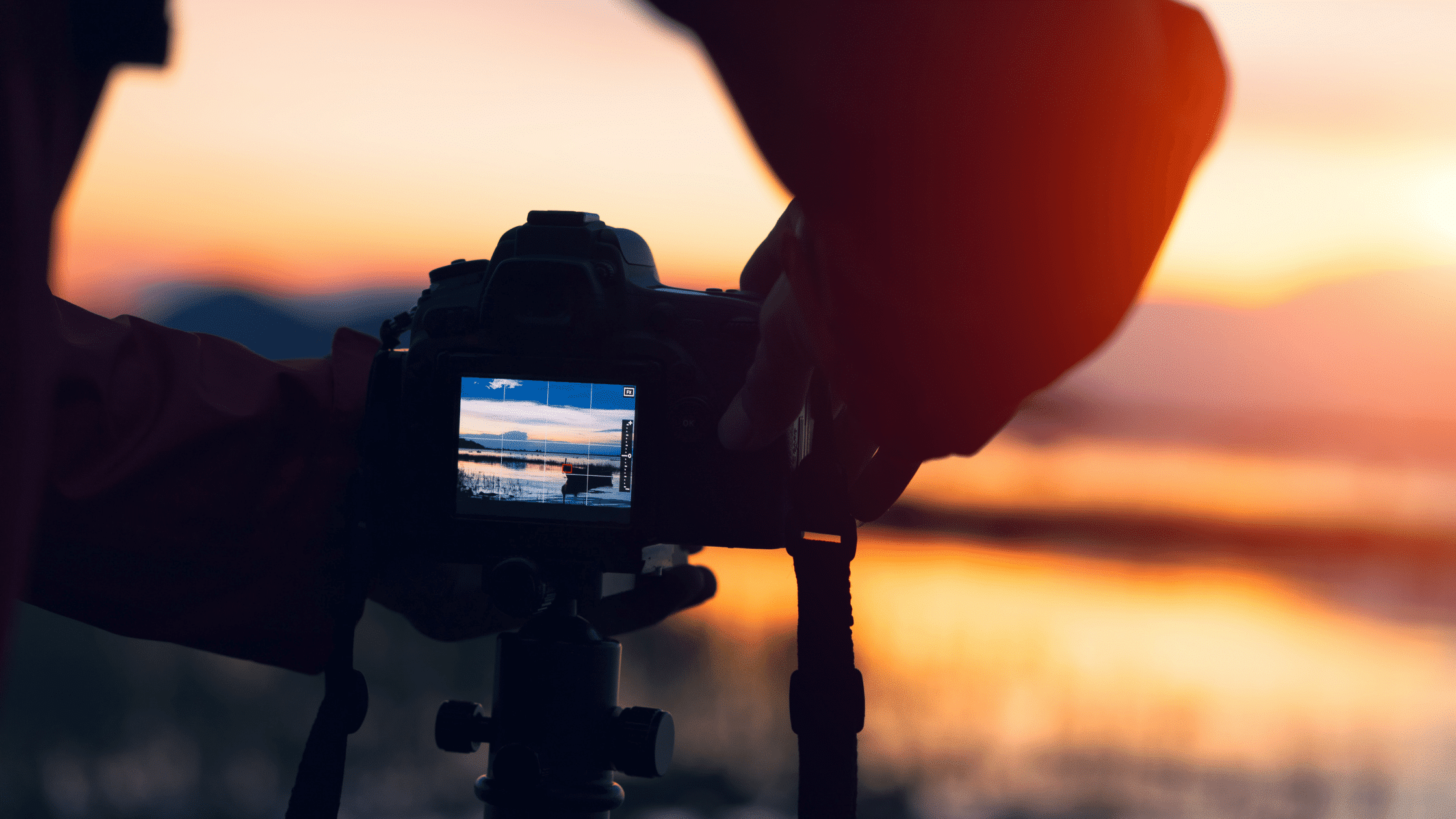 Low Light Photography: How to Shoot Without a Tripod